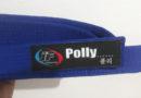 Pollyanna é Faixa Azul no Taekwondo